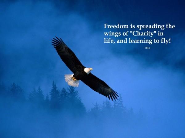 vrijheid